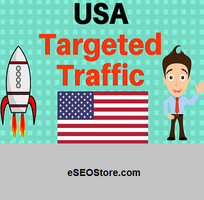 US website traffic